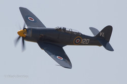 B005 Hawker Sea Fury