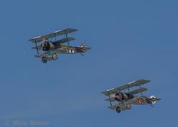 D004 Fokker Dr1 Triplanes
