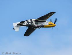C008 P-51D Mustang