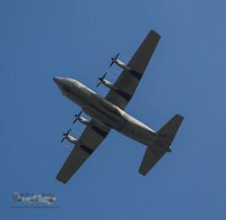 B087 Italian Hercules