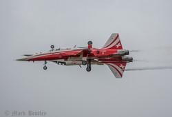 A011 Swiss F5 Tiger II