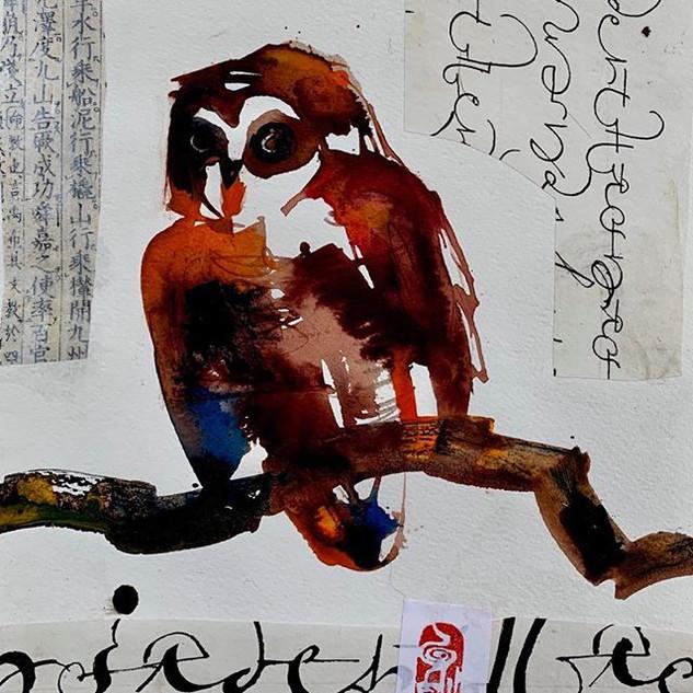 Owl #2/Owl series