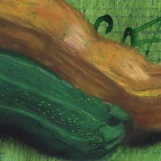 Fruits of the Garden series