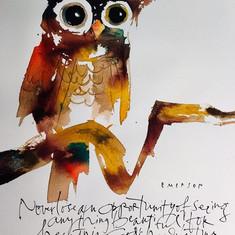 Owl #4/Owl series