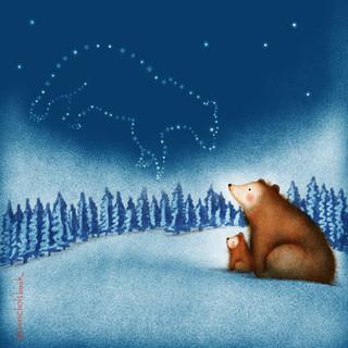 Brown bears looking at stars