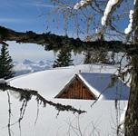elfenhaus-gaiswinkler-winter