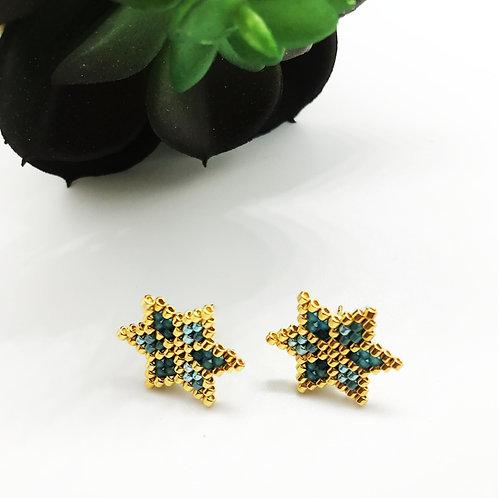 Boucles d'oreilles puce STAR