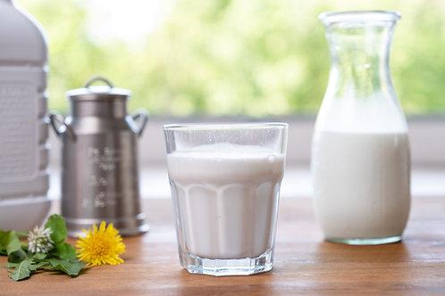 Büffelmilch