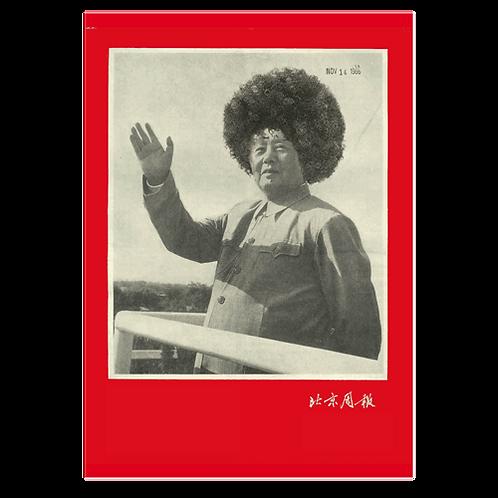 MAO Poster by Cristina de Middel