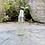 Thumbnail: Tea Tree oil 5ml, certified organic