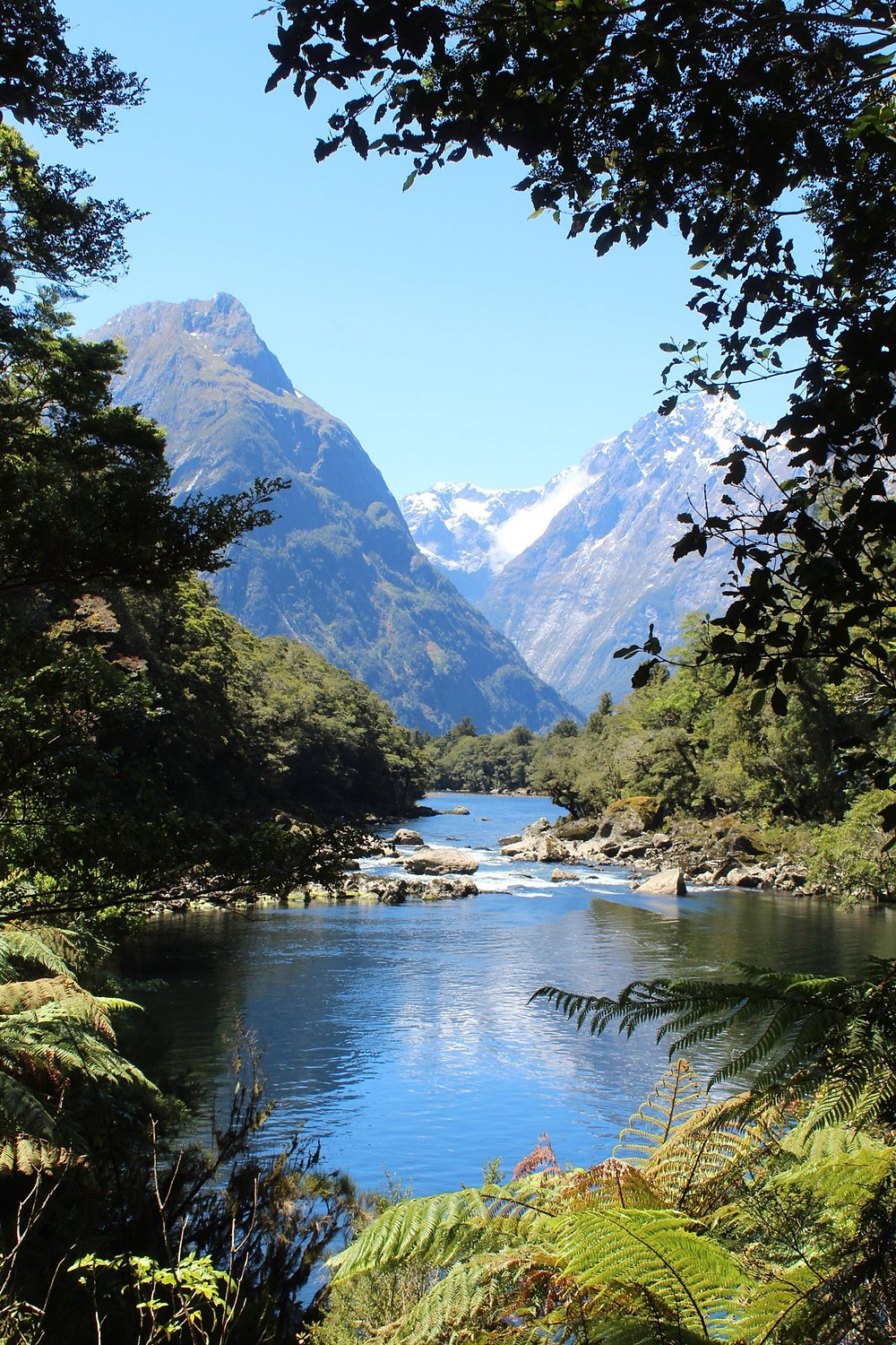 Milford Sound from the track