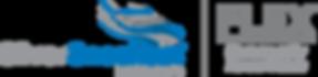 SilverSneakers_FLEX_RGB_REG-1000px.png