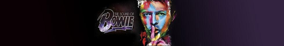 Bowie Banner.jpg
