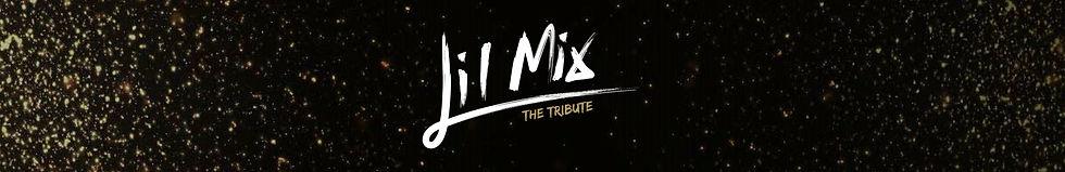 Lil Mix Banner.jpg