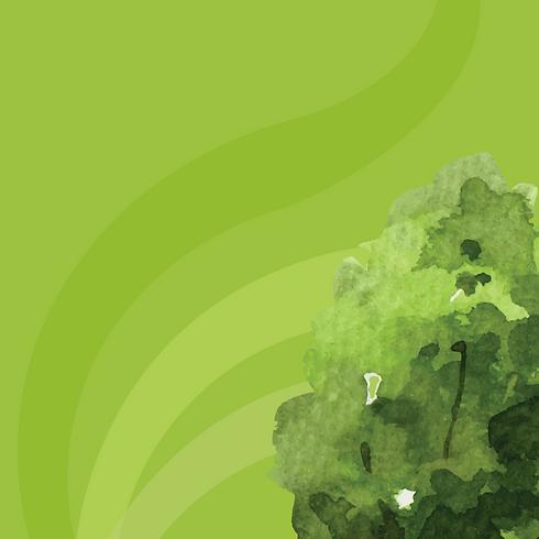 Fondo Camino Verde-04.png