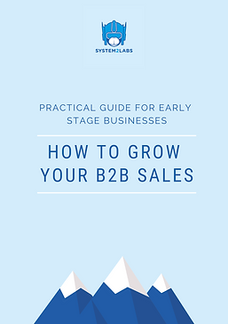 How to grow your B2B sales - partcical g