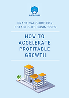 How to accelerate profitable growth - pr