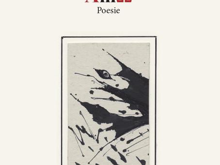 Amo. Poesie