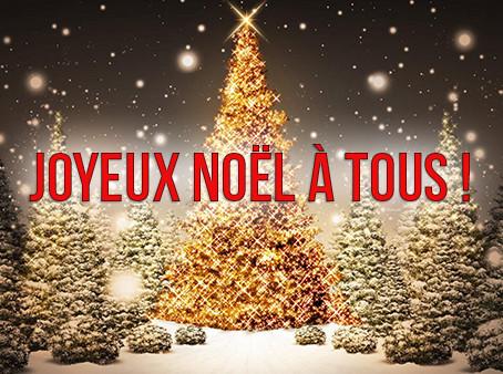 Toute l´équipe aepspieces.com vous souhaite un Joyeux Noël
