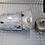 Thumbnail: Boite de vitesses auto MERCEDES W222 6.5 AMG A2312710400