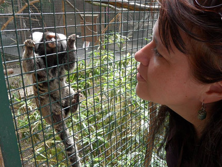Happy New Monkey