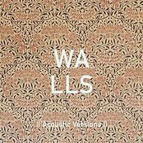 _walls_.png