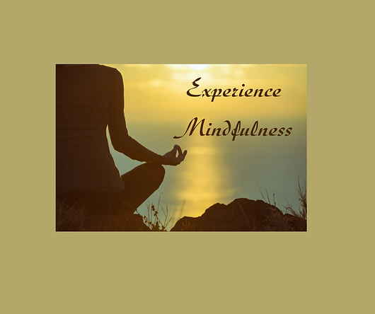 Copy of Experience Mindfulness.png
