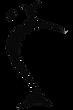 GYROTONIC® Logo