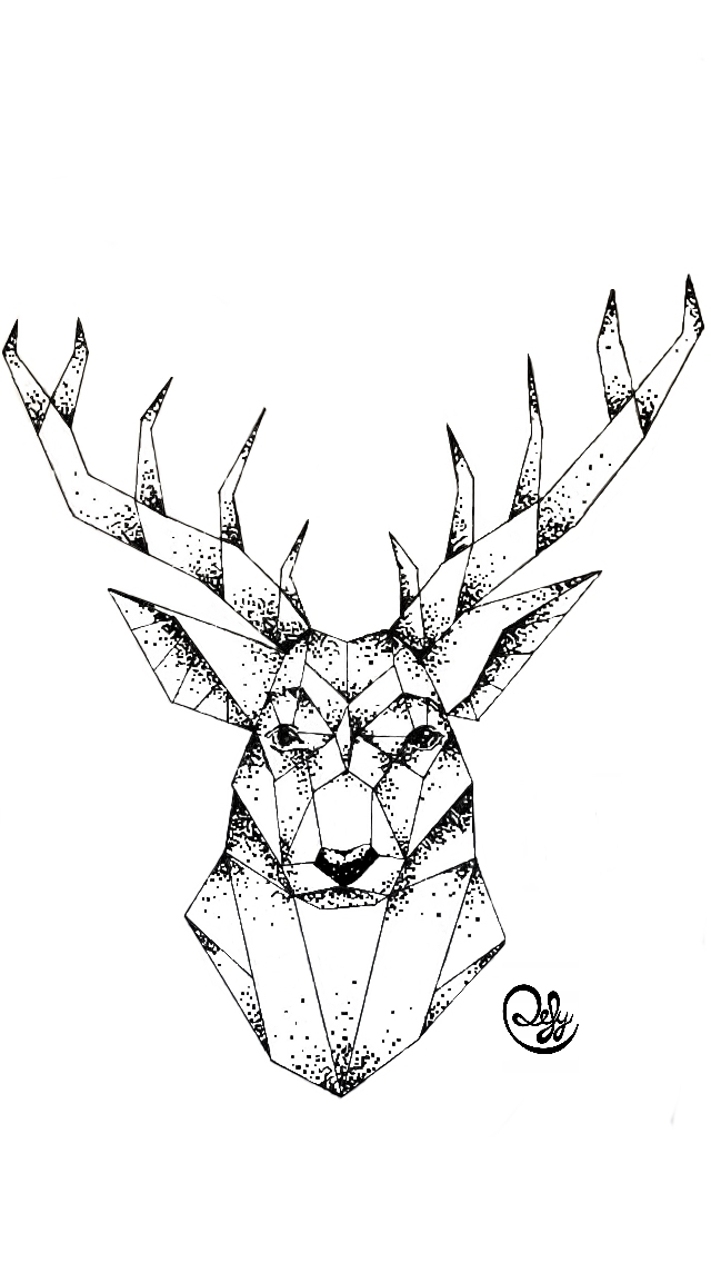 Design Hirsch