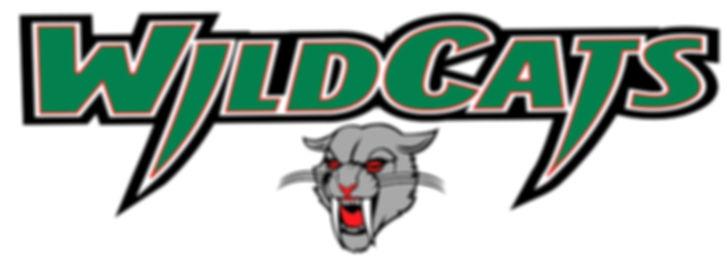 2019 DRS Wildcats.JPG