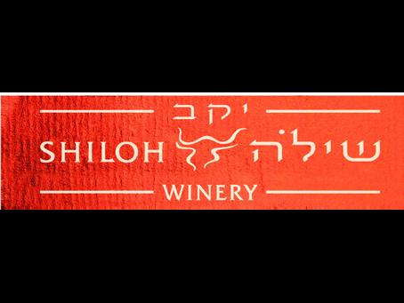Next Year in Jerusalem - לְשָׁנָה הַבָּאָה בִּירוּשָׁלָיִם