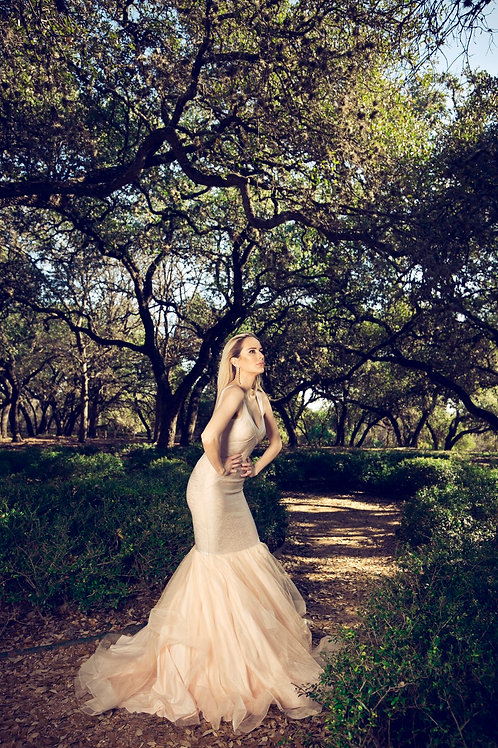 Cinderella blush gown