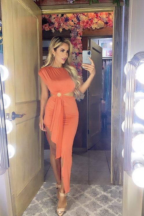 Fanta Jersey Dress
