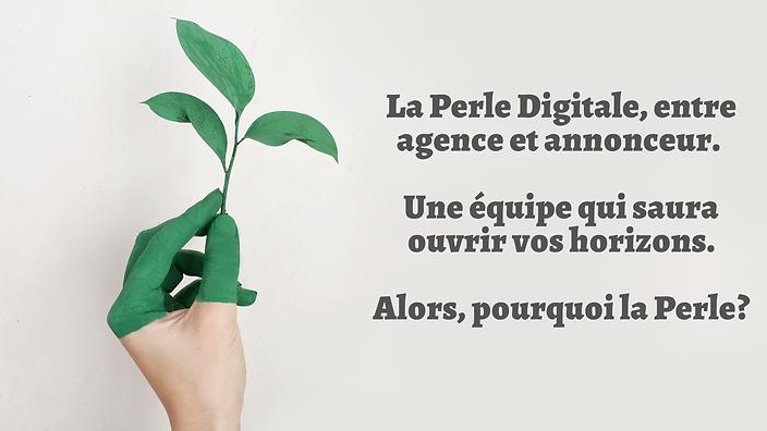La_Perle_Digitale,_entre_agence_et_annon