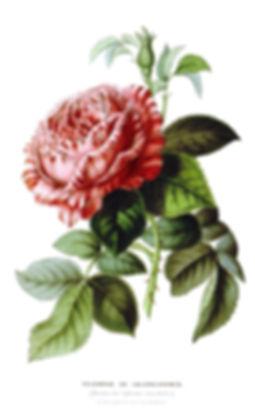 triomphe-valenciennes-1600.jpg