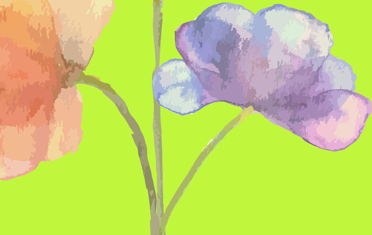 flowerwbkgrnd.png