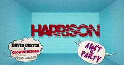 David Guetta feat Harrison