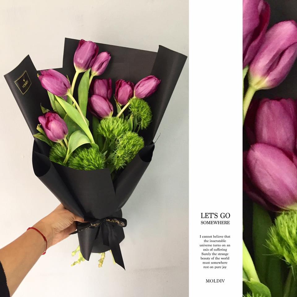 1 Decena Tulipán Follaje