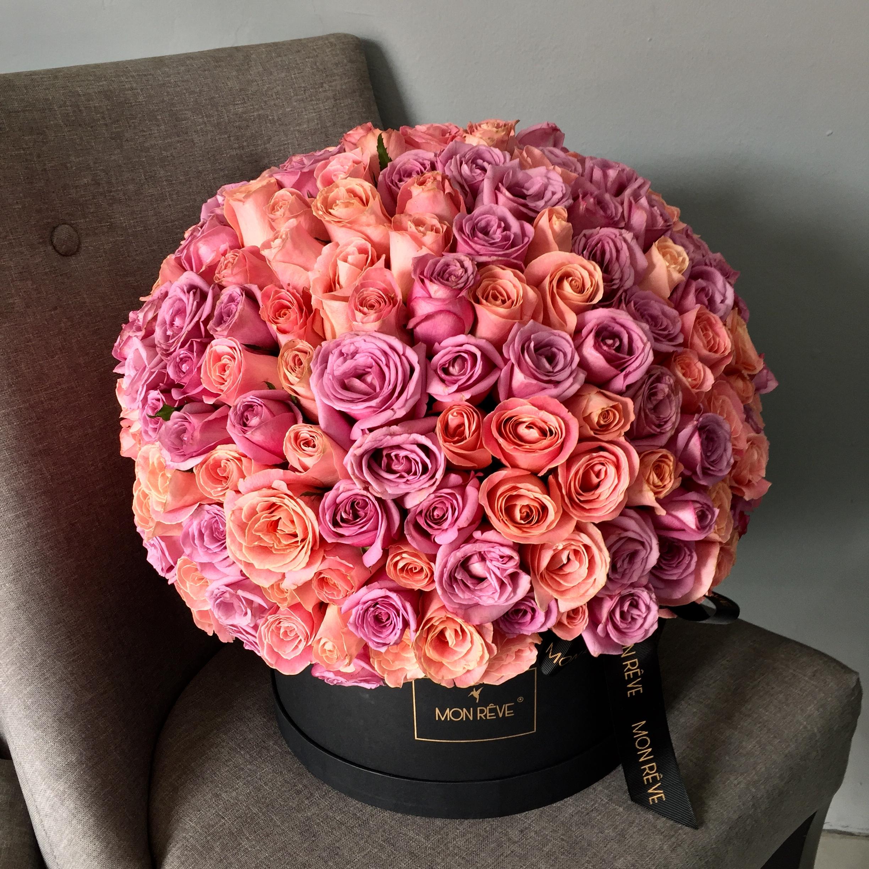 230 rosas