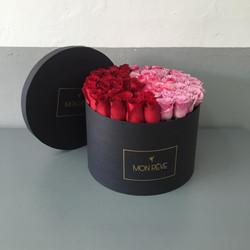 Circular 64 rosas