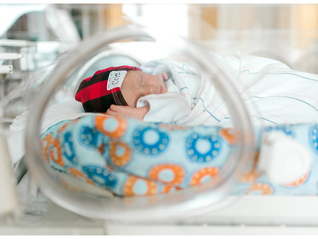 Fresh 48 Twins - Hospital Newborns - Bangor, Maine