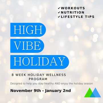 High Vibe Holiday Insta-3.png