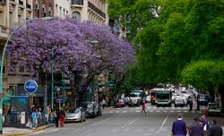 Buenos_Aires_-_Avenida_Santa_Fe_entre_Maipú_y_Esmeralda