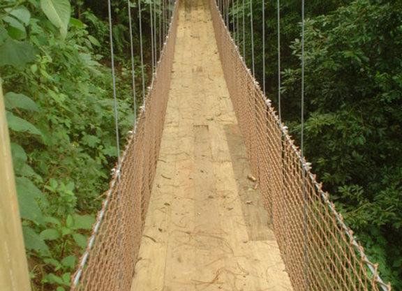 Puentes Largos