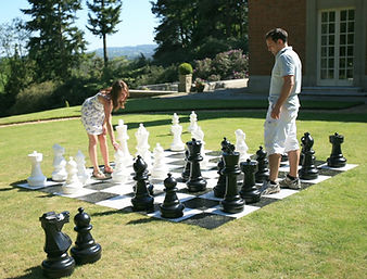 350-giant-chess-lg.jpg