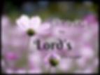 Praying_edited.png