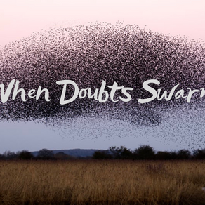 When Doubts Swarm