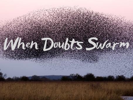When Doubts Swarm