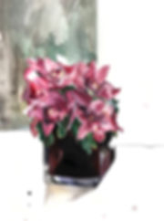 orchidupdate.JPG