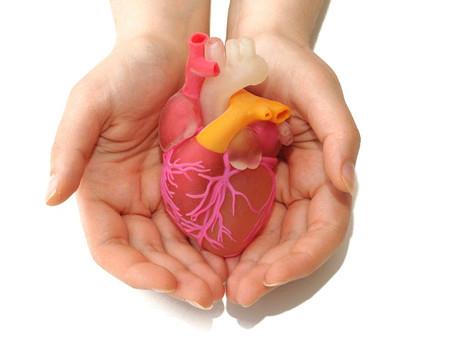 Organidoonorlusest